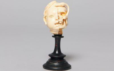 Crâne Vanitas