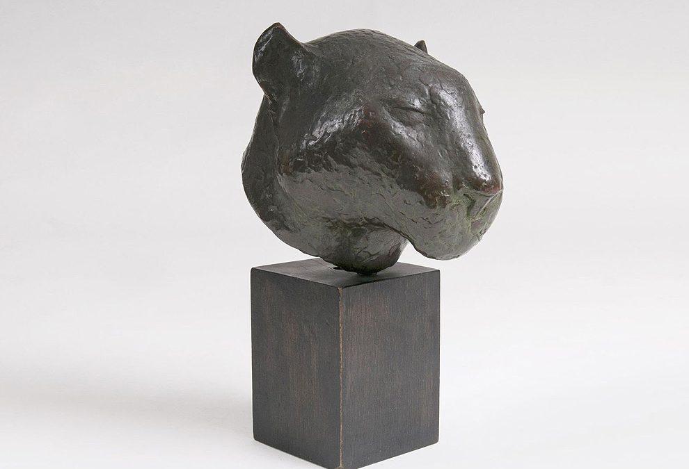Kopf eines Panthers